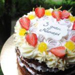 Торт без мастики для мами