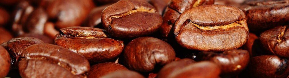 zerna-kavy